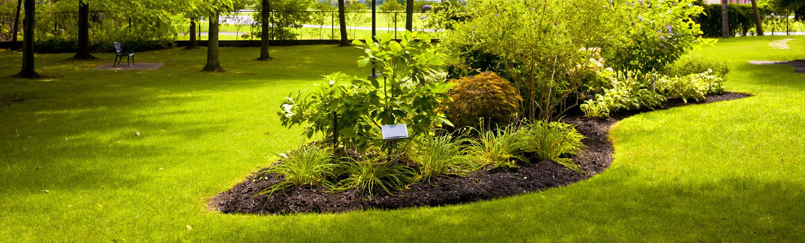 bepflanzung und pflege gr nbau erfurt garten und landschaftsbau denis wei. Black Bedroom Furniture Sets. Home Design Ideas